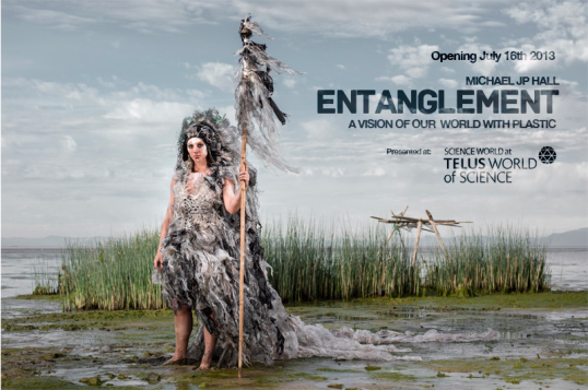 Entanglement|Michael J.P. Hall