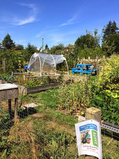 Un jardin urbain sur Arbutus voué à la disparition | Photo par Noel Jennings