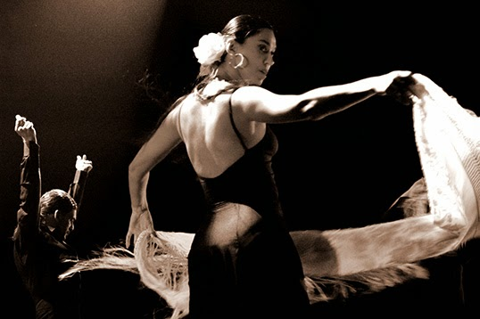 La passion du flamenco anime les danseurs. | Photo par Francesco