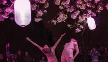 Illuminations et danse sous les cerisiers à Charleson Park. | Photo de LOBO