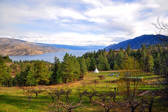 La ferme Ravens' View et sa vue à un million de dollars sur le lac Okanagan, selon les Wwoofers. | Photo par Anne-Diandra Louarn