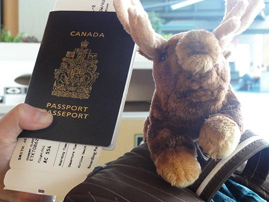 En 2013, le Canada a reçu près de 334 000 demandes de citoyenneté. | Photo par Steven Lee