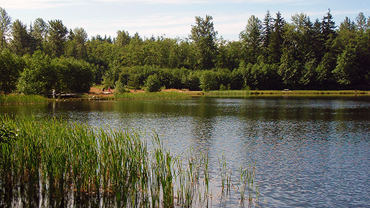 Green Timbers Urban Forest à Surrey. | Photo de City of Surrey